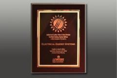 ee_awards_08